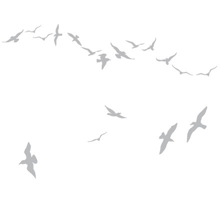 Domestic - Flock of Gulls Wandsticker, silber