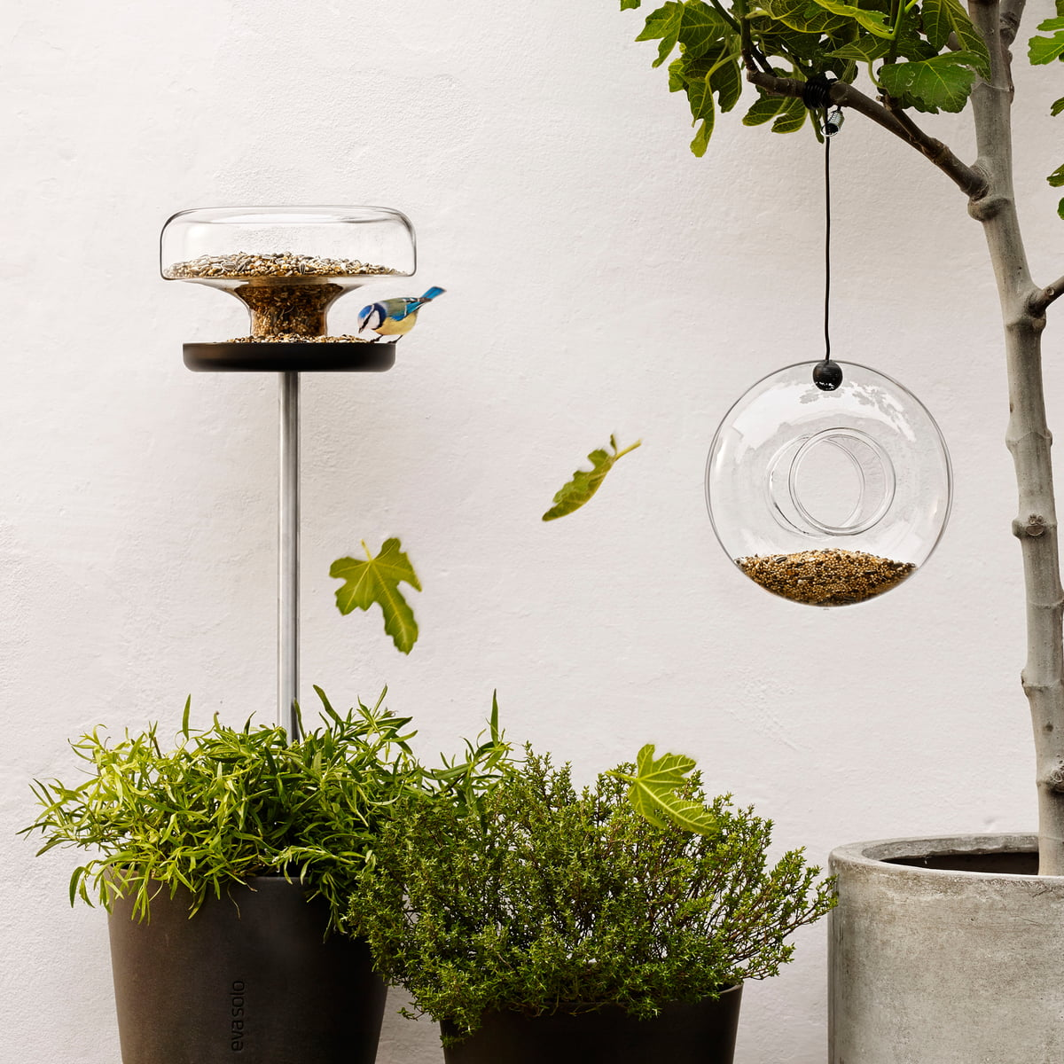futterring eva solo shop. Black Bedroom Furniture Sets. Home Design Ideas
