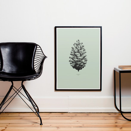 Paper Collective - Poster Nature 1:1 Pine Cone (green)
