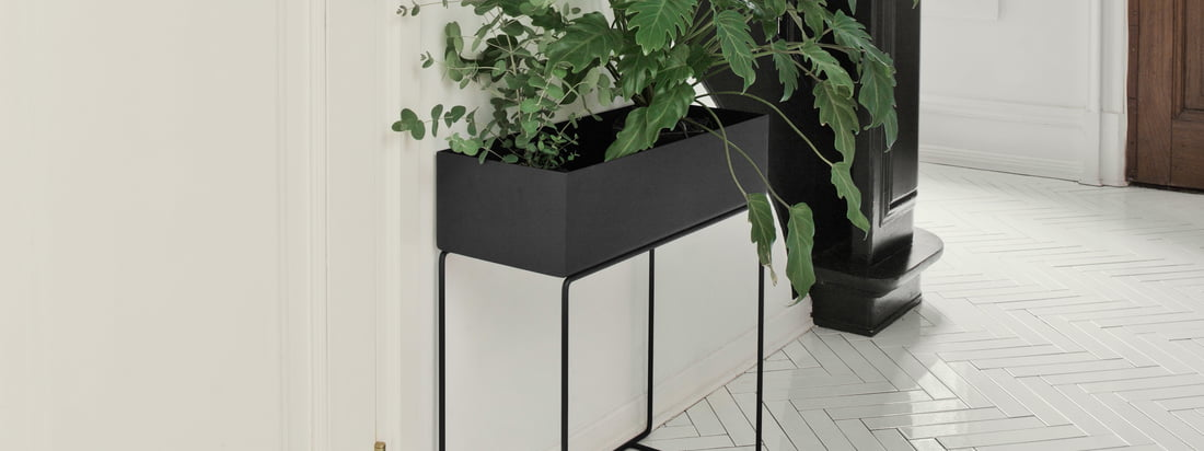 Connox Adventskalender - Türchen 19 - Ferm Living - Plant Box