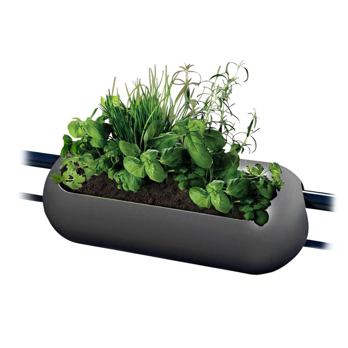 rephorm - balconismo Balkonkasten, graphit | Garten > Pflanzen > Pflanzkästen | rephorm