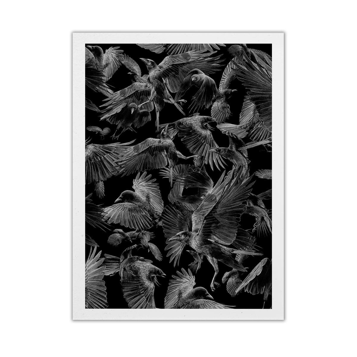 Paper Collective - Black Crows, 50 x 70 cm   Dekoration > Bilder und Rahmen > Poster   Paper Collective