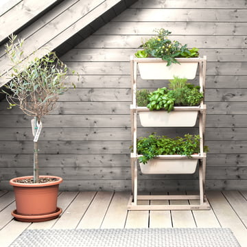 vertical garden von urbanature im design shop. Black Bedroom Furniture Sets. Home Design Ideas