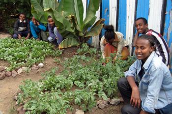 Spenden für Äthiopien
